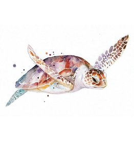 ZintenZ postcard Turtle