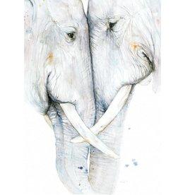 ZintenZ postcard Elephants