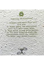 Barbosa Fair Trade postcard Love grows here