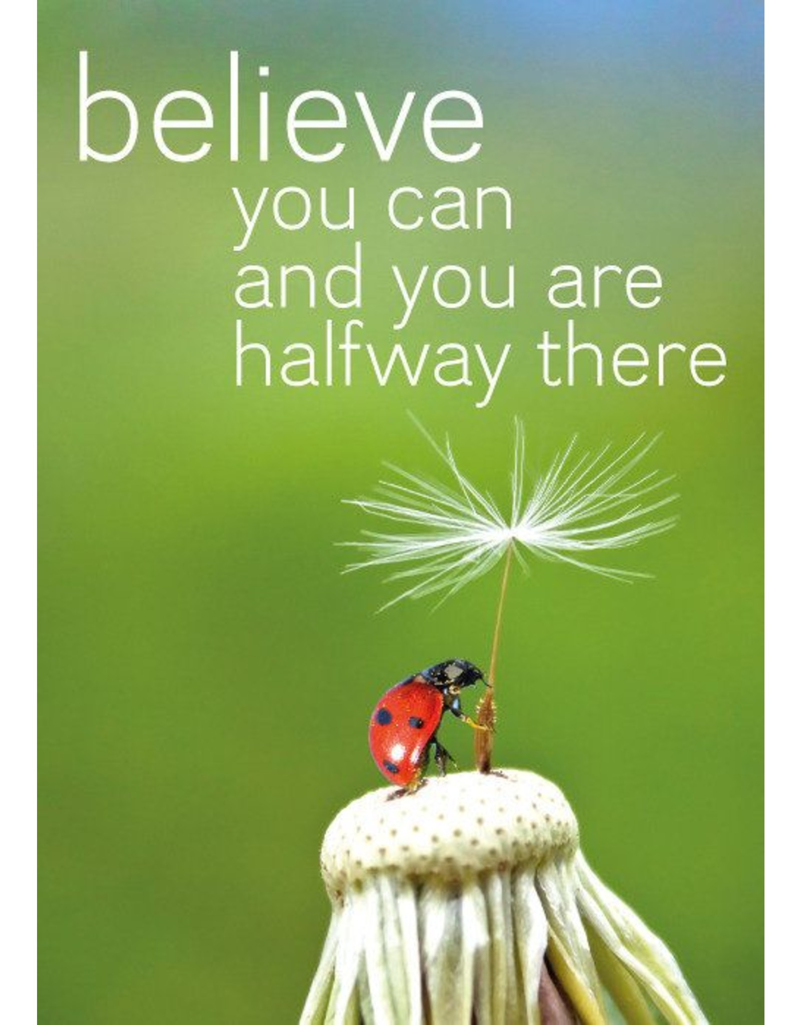 ZintenZ magneet Believe you can