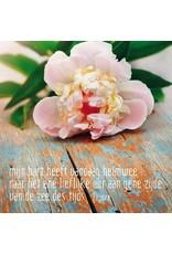 ZintenZ postkaart Mijn hart heeft vandaag heimwee