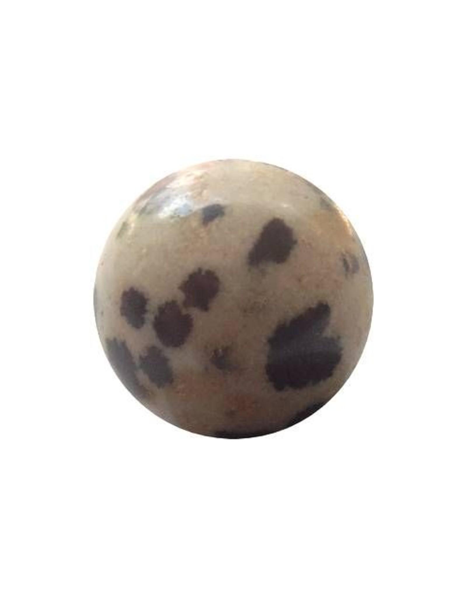 Interchangeable gemstone dalmatian Jasper 12 mm