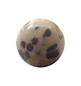 Wisselsteen Jaspis dalmatiër 12 mm