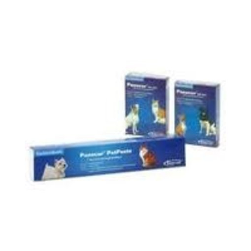 Panacur KH & Pet Paste