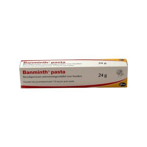Banminth Banminth Pasta Hund