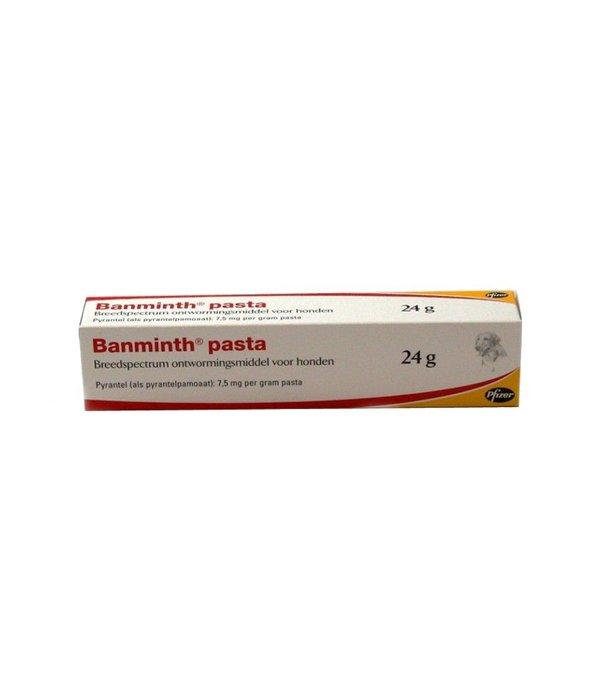 Banminth Pasta Hund
