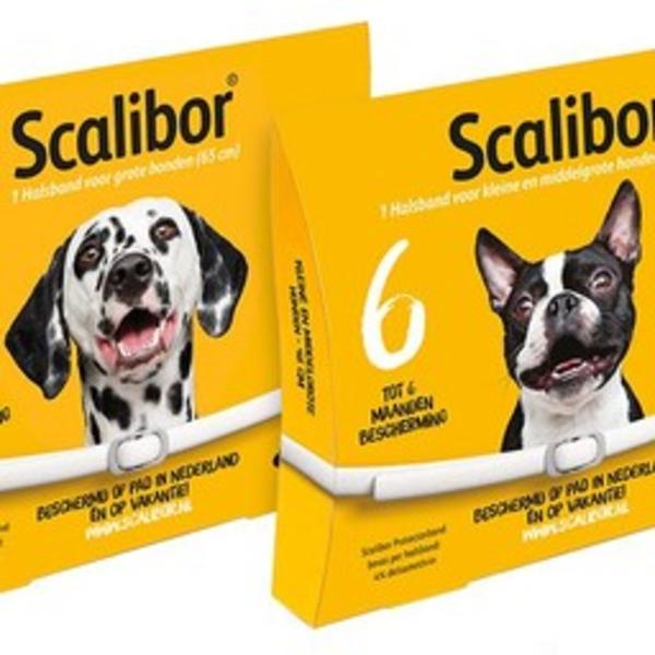 Scalibor Protectorband Hund