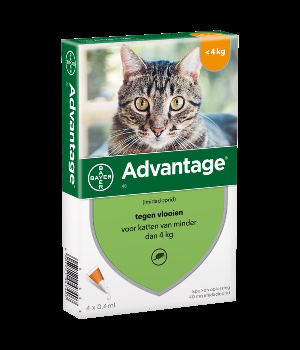 Advantage Advantage Katze