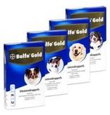 Bolfo Gold Bolfo Gold Hund
