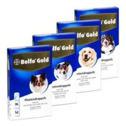 Bolfo Gold Hund