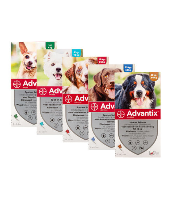 Advantix Advantix Hund