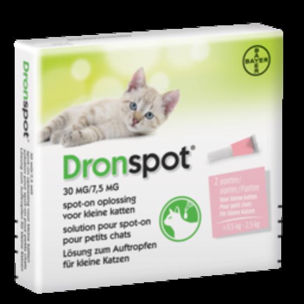 Dronspot Cat