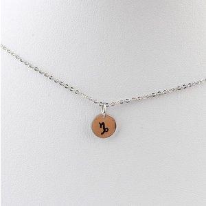 "Necklace ""Capricorn"" silver"