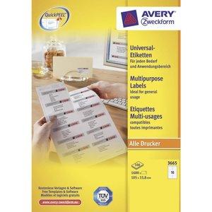 Avery 3665
