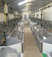 Pro Dromi® Penning for farrowing Nanny