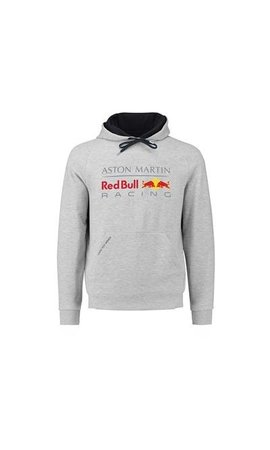 Red Bull Racing RBR Logo Hoody Grijs