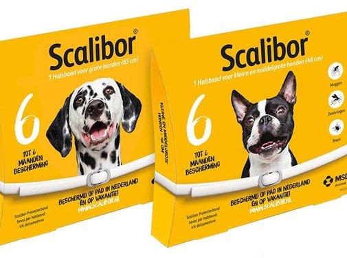 Scalibor Scalibor Protectorband Hund