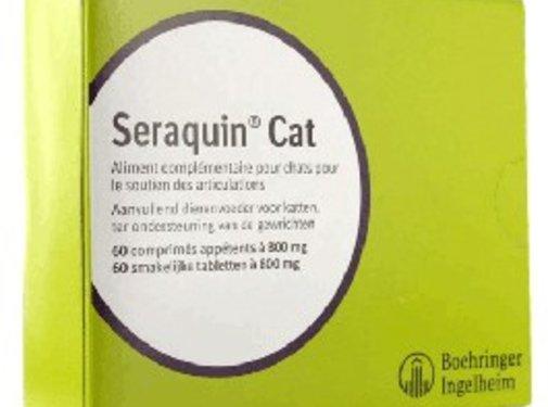 Seraquin Seraquin Omega Katze