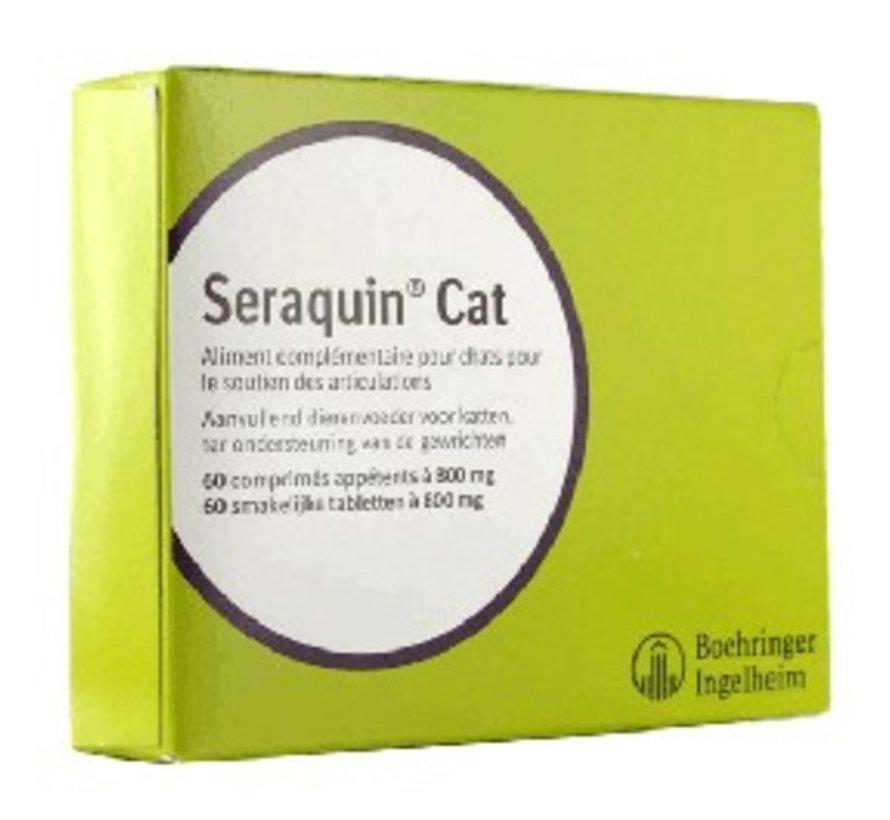 Seraquin Omega Katze
