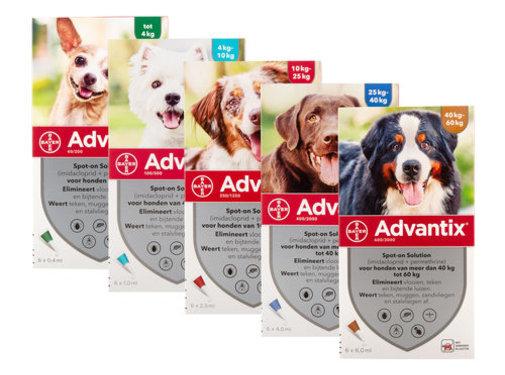 Advantix Advantix Hund
