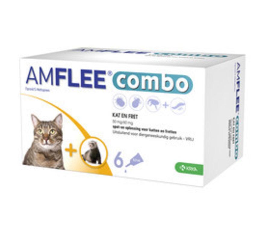 Amflee Combo Katze