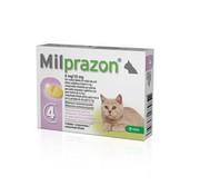 Milprazon Milprazon Katze