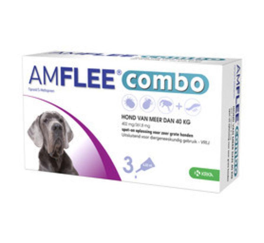 Amflee Combo Hund