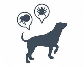 Fleas & Ticks e.a.