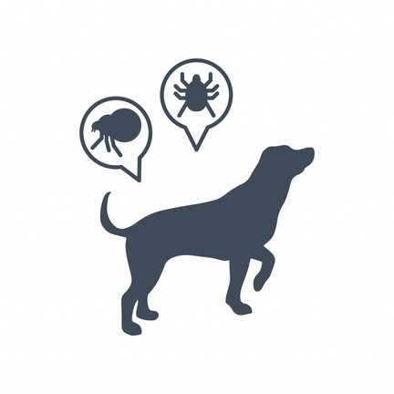 Fleas & Ticks e.a. Dog