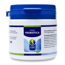 Probiotic Horse