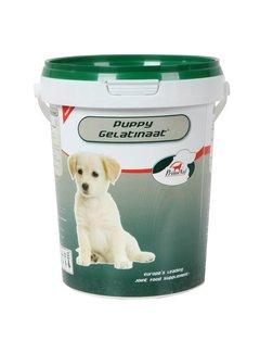 Primeval Primeval Gelatinaat Pup