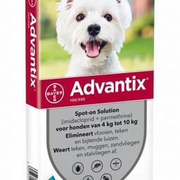 Advantix Dog