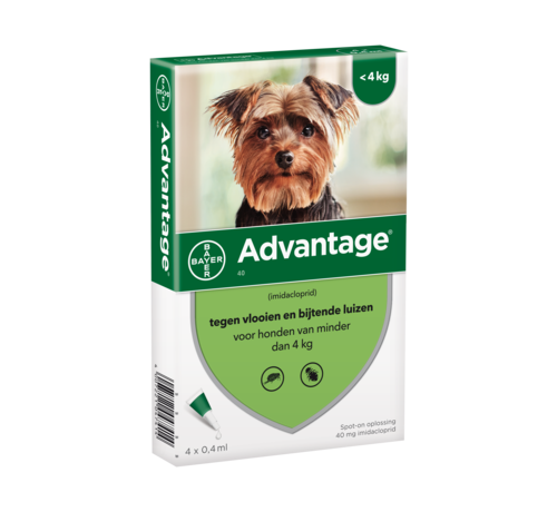 Advantage Advantage Dog