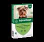 Advantage Dog