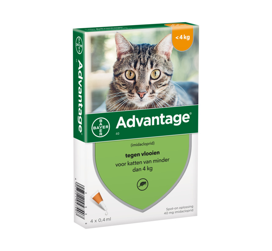 Advantage Cat