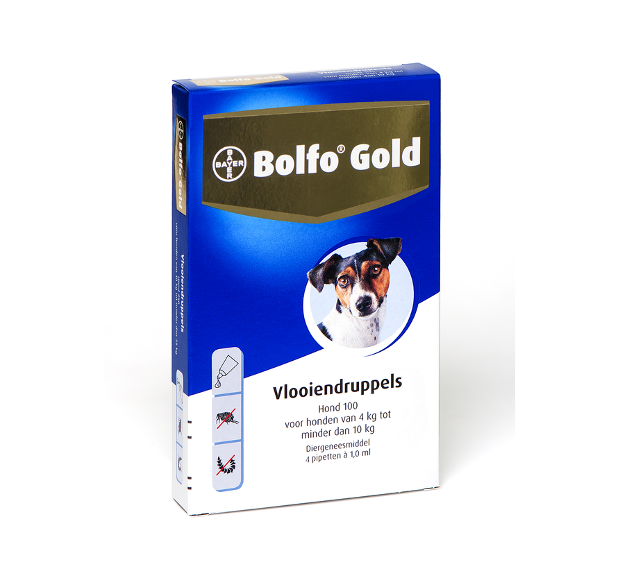 Bolfo Gold Dog