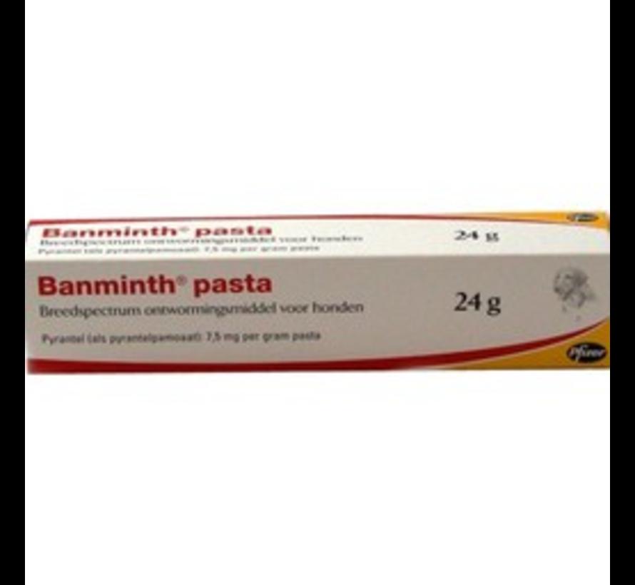 Banminth Paste Dog