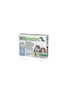Milprazon Milprazon Dog