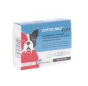 Anthelmex Anthelmex Chews Dog