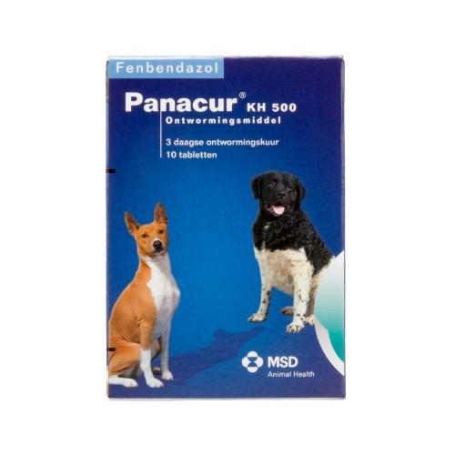 Giardia panacur c - Giardiosis kutyákban és macskákban