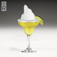 thumb-Margarita R-Evolution-3