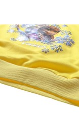 Meisjeskleding Frozen Meisjes Sweater 4 - geel