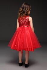 Meisjeskleding Meisjes Feestjurk Ella - rood