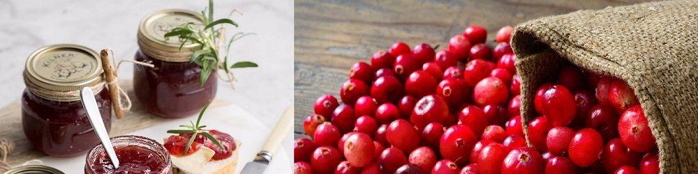 Heerlijk recept voor cranberry saus