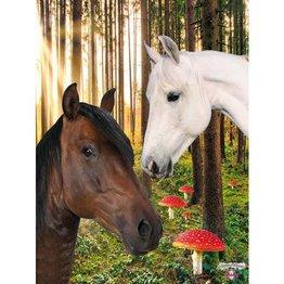 De Kunstboer Poster Paarden