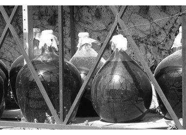 Rivesaltes & Banyuls