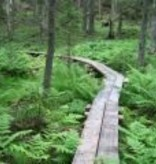 VARG Finland