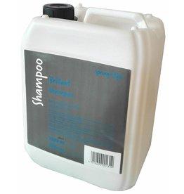 Spring Brillant shampoo 5 LTR.