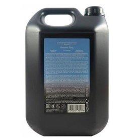 diapason Diapason Daily Use Shampoo 5 ltr.
