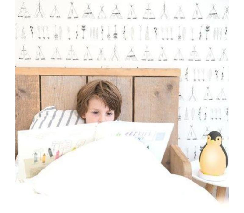 Zazu slaaptrainer pinguin grijs